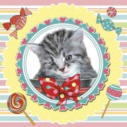 Serwetki DAISY Sweet Kitten