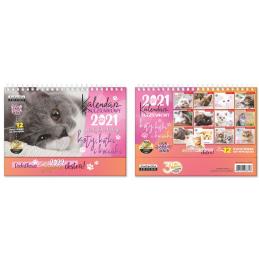 Kalendarz pocztówkowy Koty...